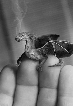 "realistic dragon on hand ""Baby dragon"" (b&w) by Nissk 2008-03 @ Flickr 2360665717"