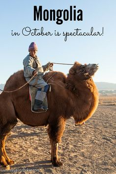 Mongolia in October is Spectacular! Golden afternoons, clear skies, frosty mornings and occasional snow! Beautiful photos to inspire you to travel to one of the most amazing countries I've ever visited.