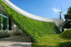 建築家:熊木英雄建築事務所「Rose garden and Green Curtain」