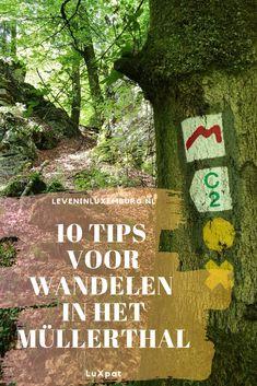 Laatst heb ik met mijn man en onze hond onze eerste wandeling gedaan in het bekende Müllerthal-gebied. Daar kwamen we erachter dat je het beste een zaklamp mee kunt nemen. Ook op klaarlichte dag! Naar aanleiding van deze wandeling heb ik 10 tips samengesteld voor iedereen die hier of op een nieuwe, onbekende plek gaat wandelen. Deze tips vind je onderaan dit verhaal. #wandelen #mullerthal #luxemburg #natuur #bos #outdoor #hiking #luxpat #luxembourg Hiking Spots, Hiking Trails, Hiking Europe, Future Goals, Van Life, Trekking, Travel Tips, Things To Do, Beautiful Places