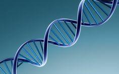The Basics of DNA Testing - Workshop