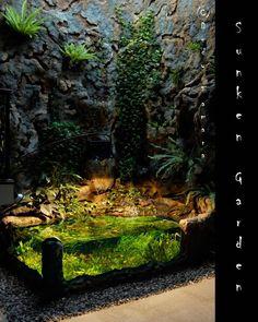 Indoor Gardening The 700 gal indoor sunken garden project - Page 24 - The Planted Tank Forum Planted Aquarium, Aquarium Terrarium, Home Aquarium, Aquarium Design, Paludarium, Vivarium, Aquascaping, Conception Aquarium, Indoor Pond