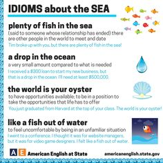 IDIOMS about the SEA#learnenglish