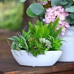 Sukulenty, sztuczne, gumowe. Silk flowers. Dom, Plants, Floral Arrangements, Cactus, Planters, Plant, Planting
