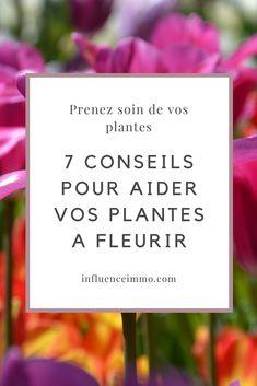 Voici comment apprendre à avoir toujours de belles plantes à fleurs dans votre maison. Le pouvoir de donner à votre famille le plaisir de vivre au sein d'un havre de paix naturelle est quelque chose de merveilleux.#jardin #jardinage #conseils #astuces #moderne #diy #planter #ideedeco #verticalgarden #ecologico