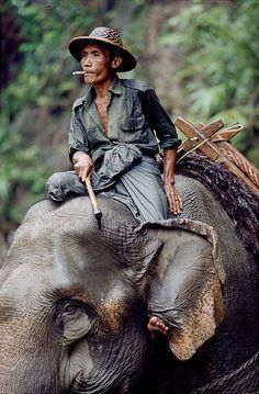Weathering the Elements, Burma/Myanmar by Steve McCurry