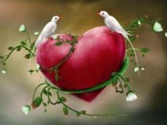 Heart, I said, what a gift it has been to enter this circle of lovers, to see beyond seeing itself ~ Rumi <3