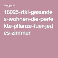 18025-rtkl-gesundes-wohnen-die-perfekte-pflanze-fuer-jedes-zimmer