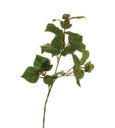 French Ivy Spray Green 70cm