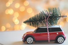 Bringing Home The Tree Ornament ~ would look even better on a vintage car!