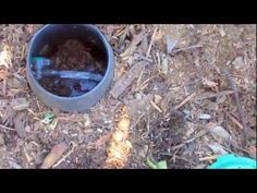 Grey Water is water from the house which is normally washed down the drain (such as laundry water), but is actually good for trees. This video is part of a s. Grey Water System, Water Systems, Tv Videos, It Works, Laundry, Rain, Trees, Gardening, Pictures