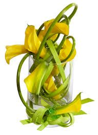 Image result for yellow and green floral displays