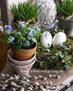 Es grünt so grün auf der Terrasse. Neuer Blogpost dazu  ist online. Link steht im Profil 😊  Green over Green on our patio. More about in my new post. Link is in profil 😊 #newblogpost #linkinprofile #springishere #newontheblog #springtime #spring #springmood #rustic #decoration #lantliv #levlandlig #landleben #springflowers #patio #villakoenig