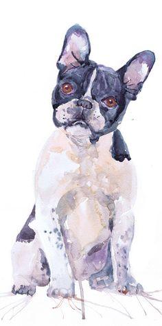 Boston terrier art print painting watercolor dog art by ValrArt