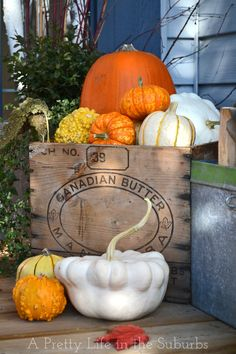 Pretty Pumpkins in an Old Wooden Box - it couldn't get much simpler or prettier!  ~~via http://www.aprettylifeinthesuburbs.com/