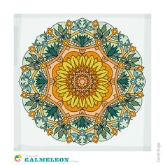 Calmeleon Coloring Book For Adults Mindfulness On The App Store