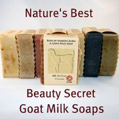 Natural Body Care & Aromatherapy Products with Tooth Chip Soap & Goat Milk Soaps from Rose of Sharon Acres.   Great soaps & products & locally owned!