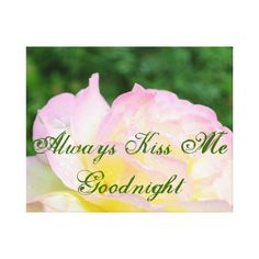 Always kiss me goodnight gallery wrap canvas