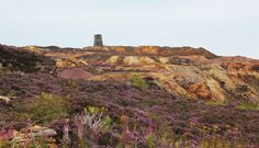 Parys mountain, Anglsey. It's like walking in a lunar landscape, the colours are amazing.