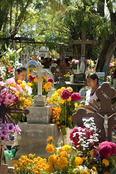 preparing the graves with flowers