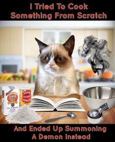 Grumpy Cat Is Summoning Demons - Grumpy Cat - Ideas of Grumpy Cat - Grumpy Cat Is Summoning Demons The post Grumpy Cat Is Summoning Demons appeared first on Cat Gig. Grumpy Cat Breed, Grumpy Cat Humor, Funny Cat Memes, Funny Cats, Funny Animals, Cute Animals, Grump Cat, Hilarious, Sphynx Cat
