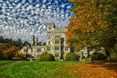 From old buildings to eerie alleys, Victoria has plenty of creepy haunts. Here are our picks for where to get spooked in Canada's top Halloween destination. Visit Victoria, Victoria Falls, Great Places, Places To See, Seattle Japanese Garden, Tourism Victoria, Hatley Castle, Victoria Vancouver Island, Multnomah Falls