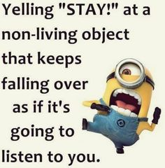 Today Funny Minions 0209 03