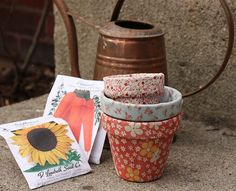 Art Mod Podge flowerpots she-s-crafty
