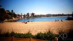 Manly Beach is renowned for its Norfolk Island pine trees that run along its promenade, along with cafes, restaurants, shops and parking.