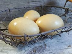 Olive Eggers are gaining in popularity as backyard chicken owners seek their colored eggs. While not a true breed, they are usually a cross between a blue and a brown egg layer. Find out why Olive Eggers can make a great addition to a backyard flock. Chicken Egg Colors, Chicken Eggs, Brown Eggs, Blue Eggs, Backyard Poultry, Chickens Backyard, Black Copper Marans, Wyandotte Chicken, Poultry Breeds