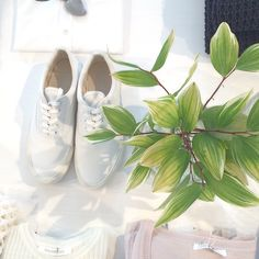 #galerievie #ギャルリーヴィー #fashion #green #white #shoes