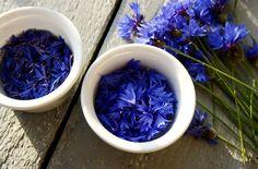 Ujędrniający tonik chabrowy przywraca elastyczność i blask skórze - DIY Magic Herbs, Slim Body, Natural Cosmetics, Diy Beauty, Herbalism, Diy And Crafts, Cabbage, Favorite Recipes, Homemade