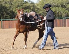 Stirrup Driving Your Young Horse by Clinton Anderson | EquiSearch: Horse&Rider | Downunder Horsemanship