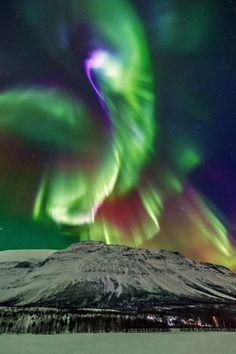 "atmospheric-phenomena: "" Amazing Aurora in Kitdalen | Wayne Pinkston """