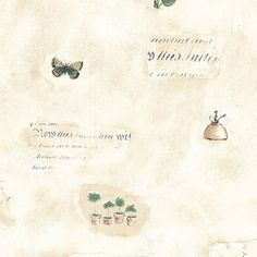 Manhattan Comfort Accentuations Edgewater Butterfly Script Wallpaper - NWKS15180