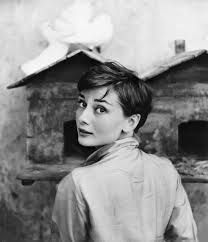 audrey hepburn photo by Norman Parkinson