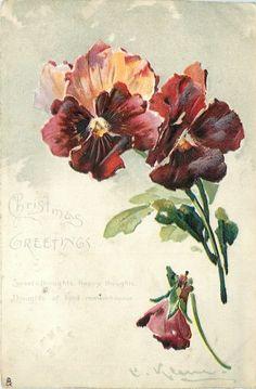 Dark purple/orange pansies by Catherine Klein ~ 1904