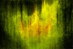 In my dreams .... Fine Art Print by Lynne Douglas Shortlisted for the Digital Photographer of the Year this beautiful image is an abstract of electric spring greens in the ancient forests near Calandar in Scotland.  prints starting at $20 #abstract #green #home #decor #electricity #forest #light #copper #print #crionna