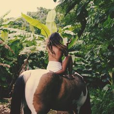 Riding horses in the wild. Wild and free
