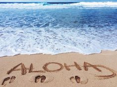 Find images and videos about love, summer and nature on We Heart It - the app to get lost in what you love. Beach Feet, Palm Beach, Summer Beach, Summer Fun, Thalia, Hawaiian Homes, Beach Vibes, Aloha Beaches, Beach Drinks