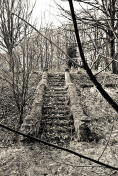 The stairs are all that's left of a home.