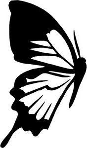 desenho-colorir-borboleta-1
