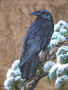 X Portrait of a Raven just Chillin' on a branch painted from a terrific photograph taken by DA photographer: [link] I love his photographs a. Raven Pictures, Art Pictures, Crow Art, Bird Art, Celtic Raven, Crow Images, Crow Painting, Raven Bird, Raven Tattoo