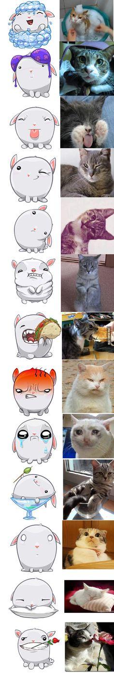 Facebook stickers vs cats - 9GAG