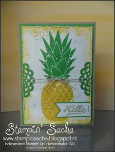 Stampin' Sacha - Stampin' Up! - Annual Catalogue 2016-2017 - Pineapple - Timeless Textures - Crumb Cake - Cucumber Crush - Crushed Curry - 2015-2017 In Color Doilies - Every Day Occasions - #stampin_sacha - #stampinup