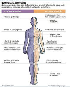 O HORMÔNIO DO CRESCIMENTO (GH) CRUCIAL DURANTE TODA A NOSSA VIDA.: SOMATOPAUSA: MENOPAUSA, ENVELHECIMENTO, DIMINUIÇÃO...
