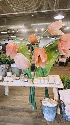 Magnolia Market, Magnolia Homes, Fix Upper, Waco Texas, Chip And Joanna Gaines, Amy, Cooking, Plants, Instagram