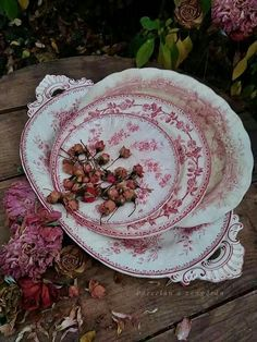 Vintage Plates, Vintage China, Rose Cottage, Cottage Chic, Pink Dishes, Coming Up Roses, Blue China, English Roses, Vintage Beauty