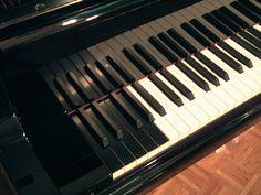 Bösendorfer Imperial 290 Keys
