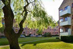 Ryparken 78, st. tv., 2100 København Ø - Lys 2 vær. lejlighed på Østerbro beliggende st.tv., i roligt kvarter #østerbro #københavn #københavnø #andel #andelsbolig #andelslejlighed #selvsalg #boligsalg